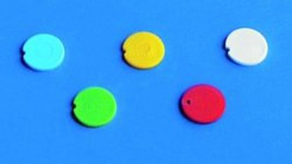 Slika za cover insert, pp, blue