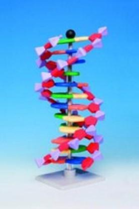 Slika za minidna molecular modell kit
