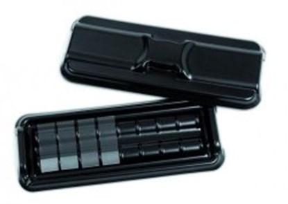 Slika za set disposable staining slide tray