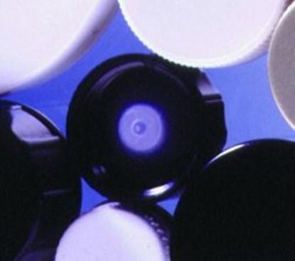 Slika za black plastic caps r 6/31