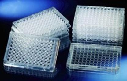 Slika za microwell plates,96 wells,flat,pack of 6