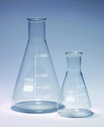 Slika za erlenmeyer flask 1000 ml