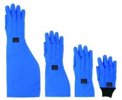 Slika za cryo gloves 10-10,5 l